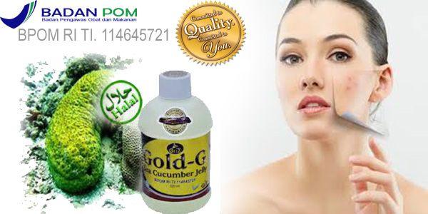 Jelly Gamat Gold G Untuk Bopeng Bekas Jerawat