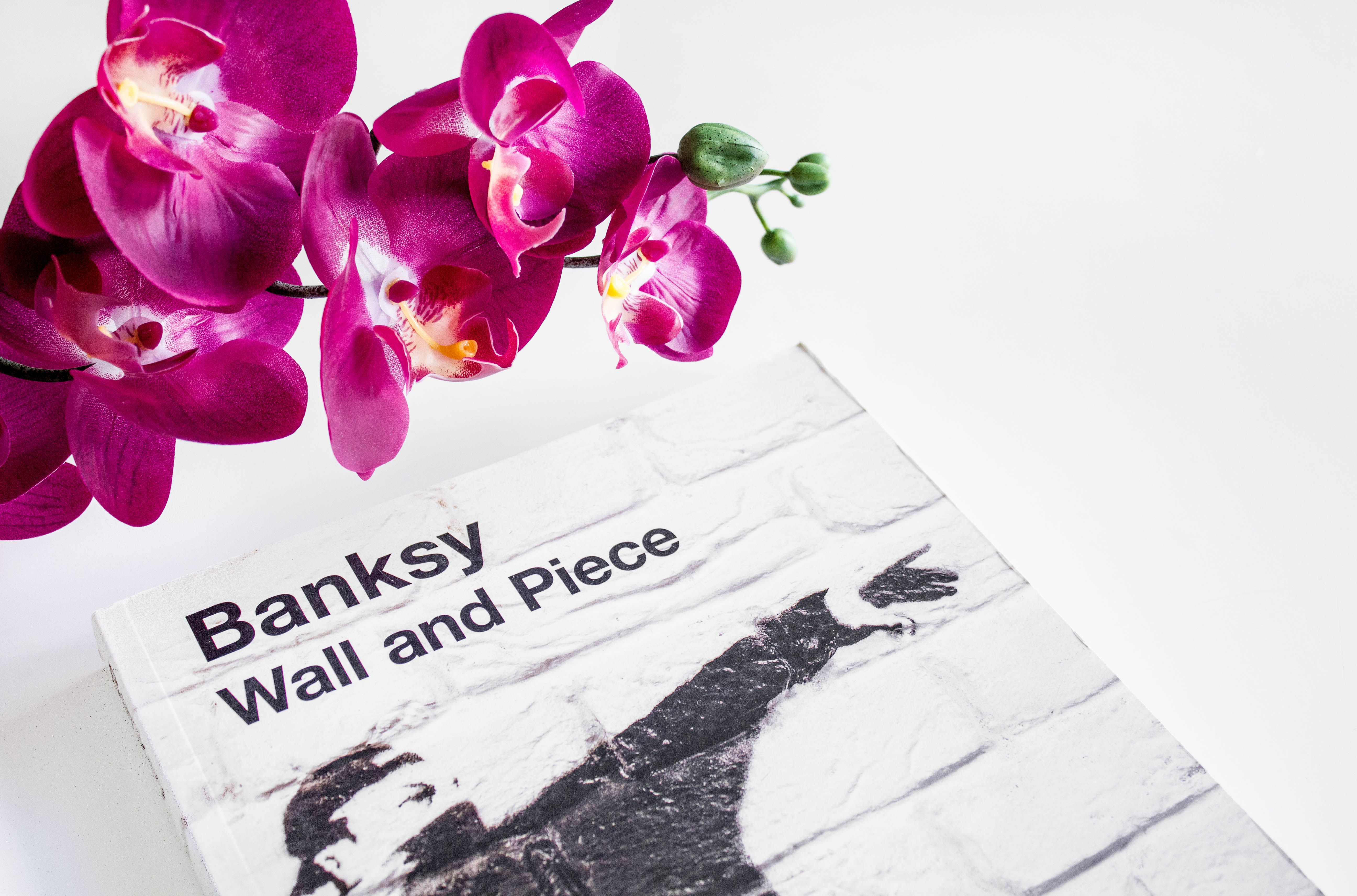 The Light Painters Loft | Banksy