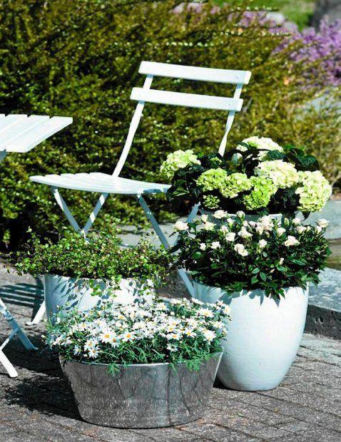 Kompozycja Z Bialych Kwiatow Na Tarasie Outdoor Furniture Sets Plants Outdoor Furniture