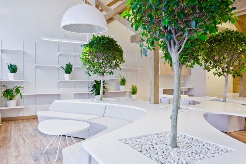 Office Greenhouse by OpenAD   Interiors and School design