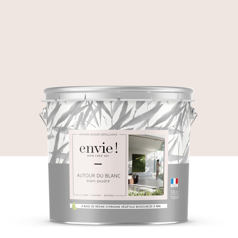 Peinture Blanc Poudré Mur Plafond Et Boiserie Envie