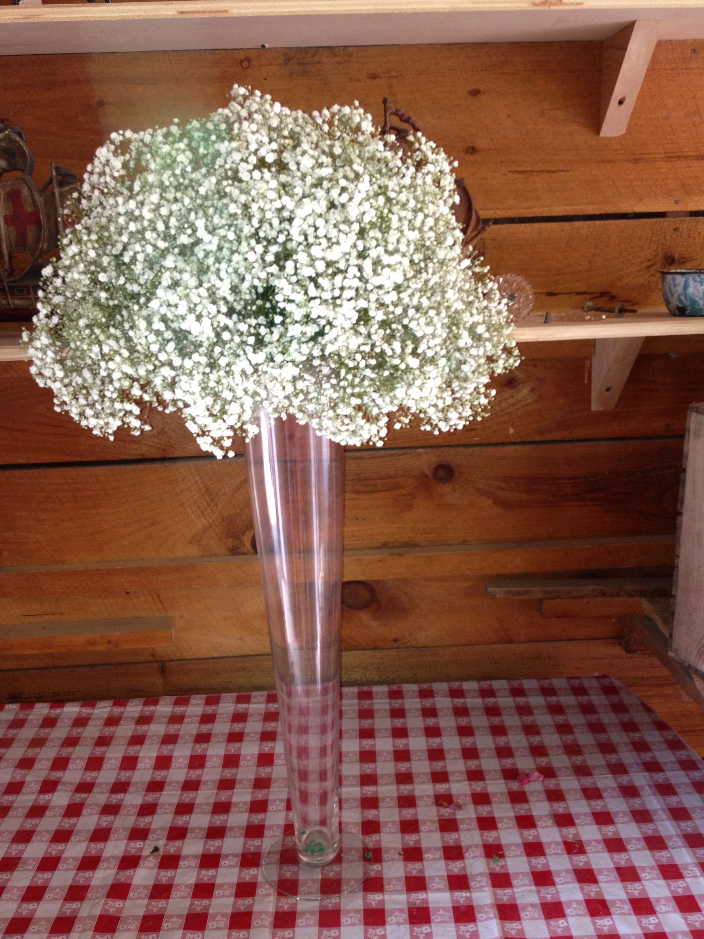 Babys breath balls on tall pilsner vases flowers by applegate babys breath balls on tall pilsner vases reviewsmspy