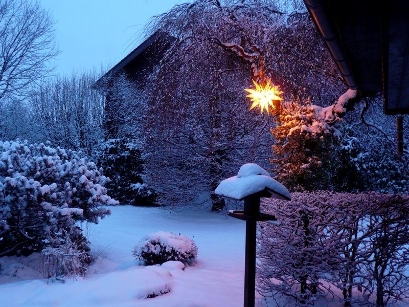 herrnhuter winter garden mybrilliantstar herrnhutstar