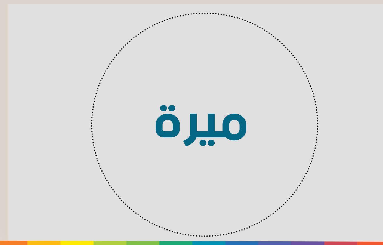 معنى اسم ميرة Pie Chart Chart Allianz Logo