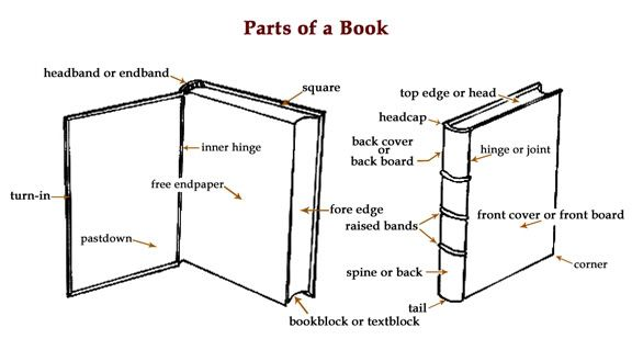 d30909ef58ac55c6e59253276bcadcf3 anatomy of a book [infographic] books are like bodies it's hard to