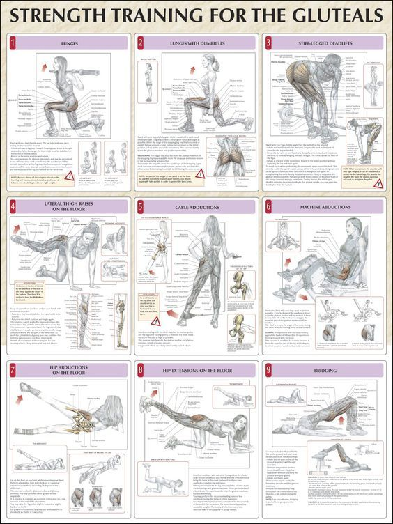 Hip strengthening exercises. Also gluteals is a hilarious word ...