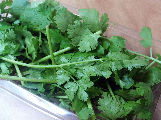 We can easily say that one of the most effective and gentle detoxifiers of heavy metals and other toxic elements in our body is Cilantro. It's the perfect medicine for extracting mercury out of your organs. A lot of toxic chemicals, including heavy metals have been linked to serious health problems such as cancer, emotional…