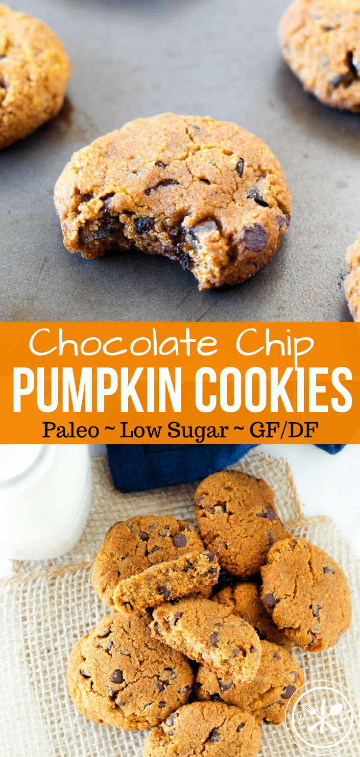 Warm paleo pumpkin cookies are bursting with mini chocolate chips in every bite! These cookies are the perfect healthy holiday treat for pumpkin season!  via @hungryhobby