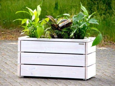 Pflanzkasten Holz M | Pflanzkasten | Pinterest