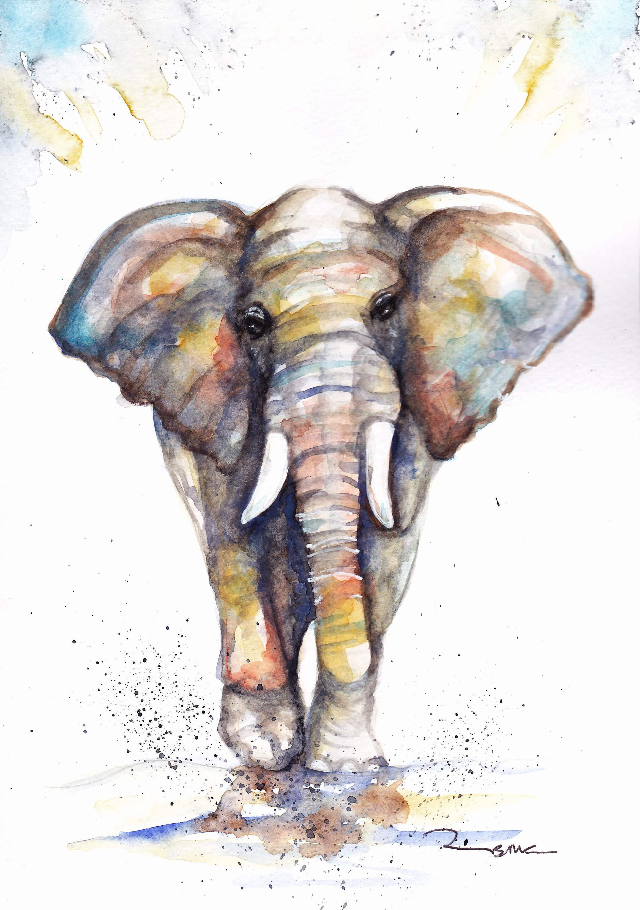 Elephant Sale Original Watercolour Painting Print Card Gift