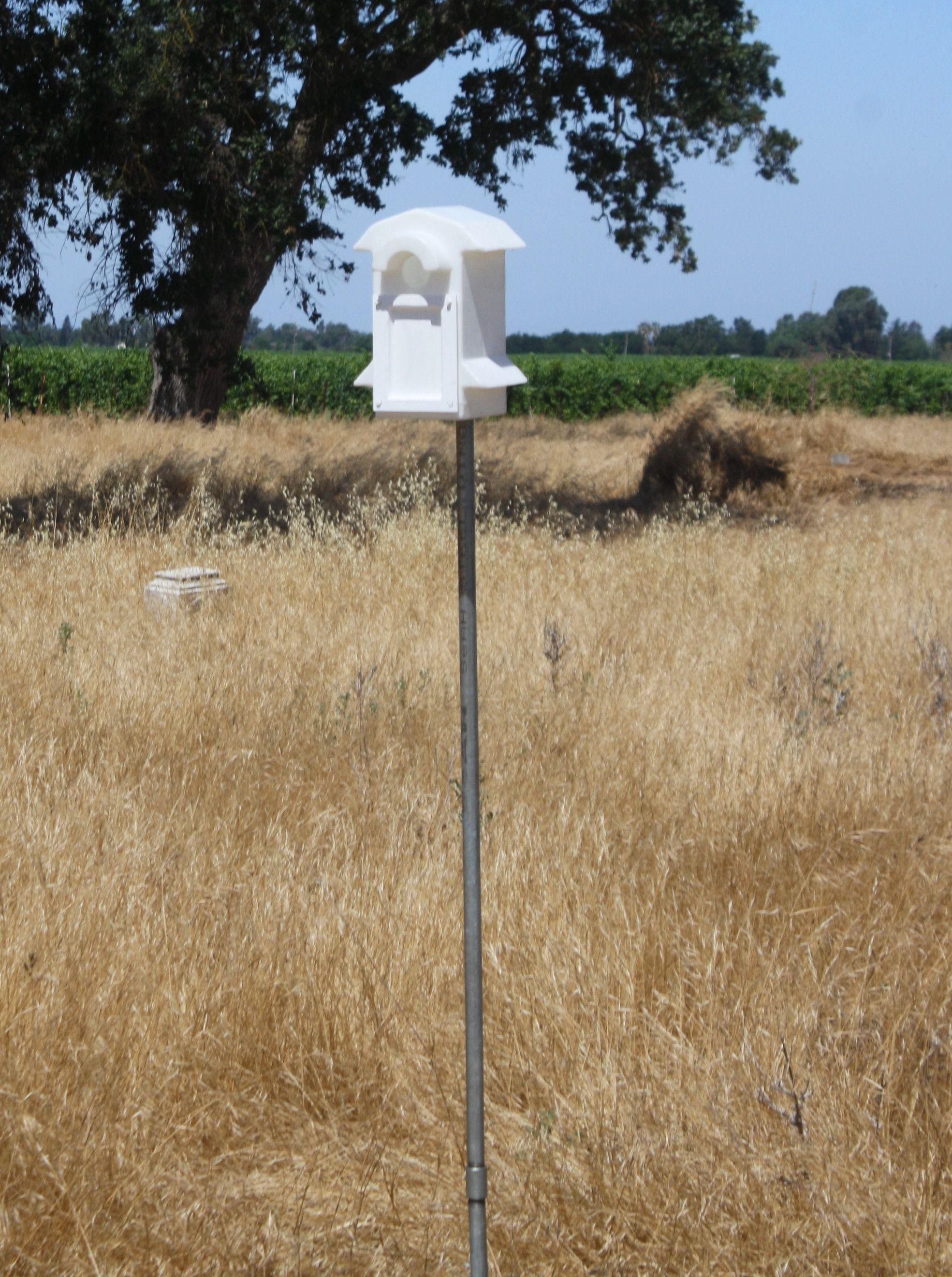 Bluebird Pole(2 half inch galvanized poles, half inch coupler, box ...