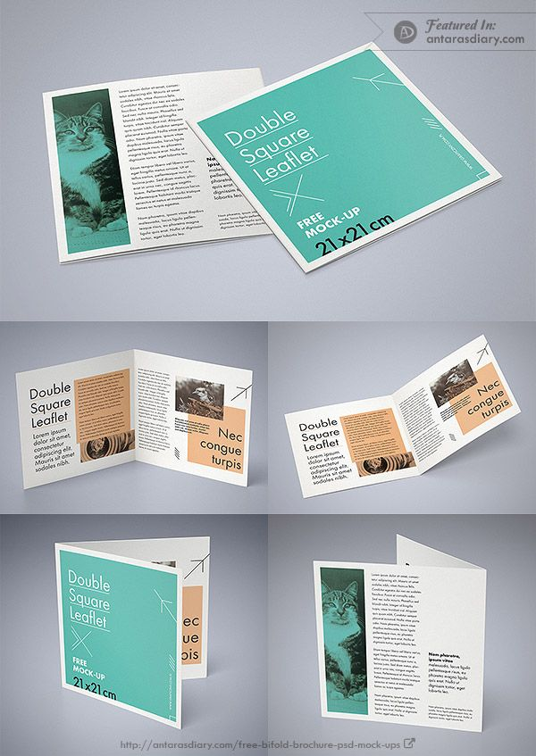 Free Double Square Leaflet Mockup Psd Square Brochures Brochure Psd Brochure