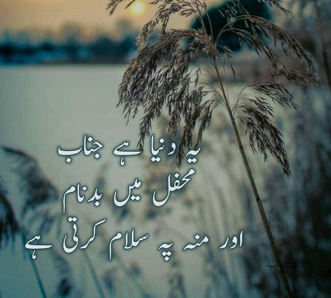 Pin by 💗💕ANMOL💕💗 on 1 GOLDEN WORDS Urdu quotes, Words