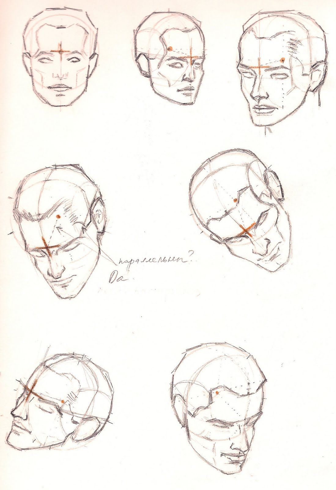 head and face structure | Drawing Tutorials - Head, Face & Portre ...