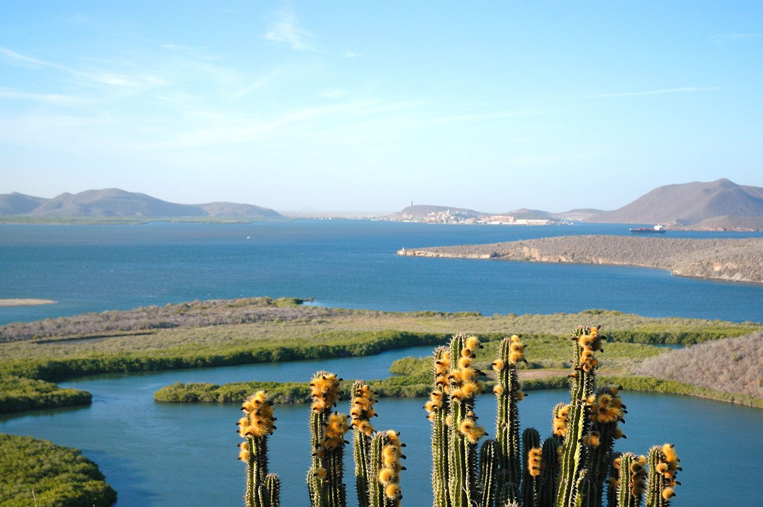 Image result for topolobampo