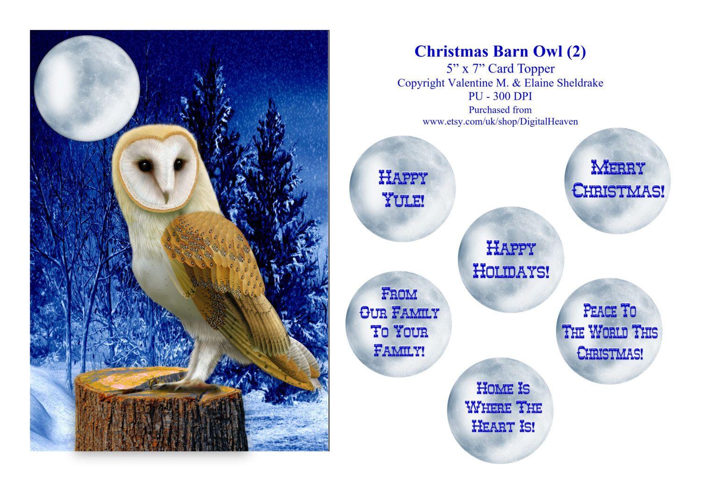 Christmas Barn Owl (2) - 5 x 7 Card Topper & Assorted Greetings - PU 300 DPI by DigitalHeaven on Etsy