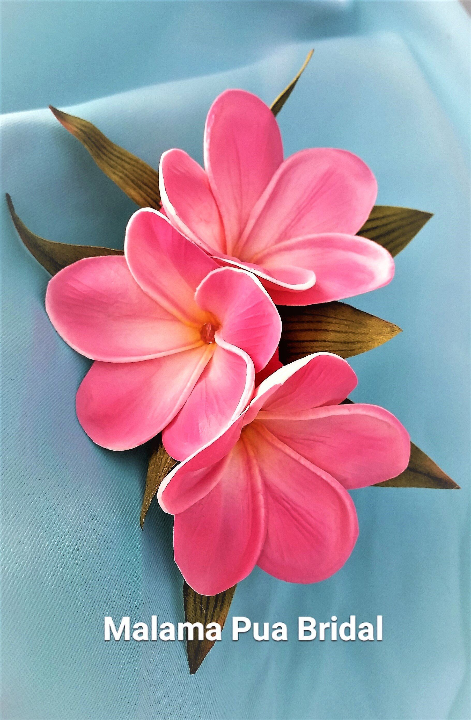 Hawaiian Plumeria Hair Flower Hair Accessories Real Touch Flowers Bridal Hair Clip Beach Fascin In 2020 Flowers In Hair Real Touch Flowers Flower Hair Accessories
