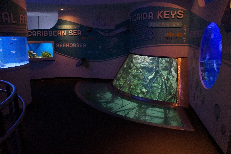 Discovery World in Milwaukee Wisconsin Reiman Aquarium