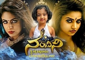 Pin By Thirupathi Reddy Sirivella On Telugu Tv Serials Gemini Serials Telugu Today Episode