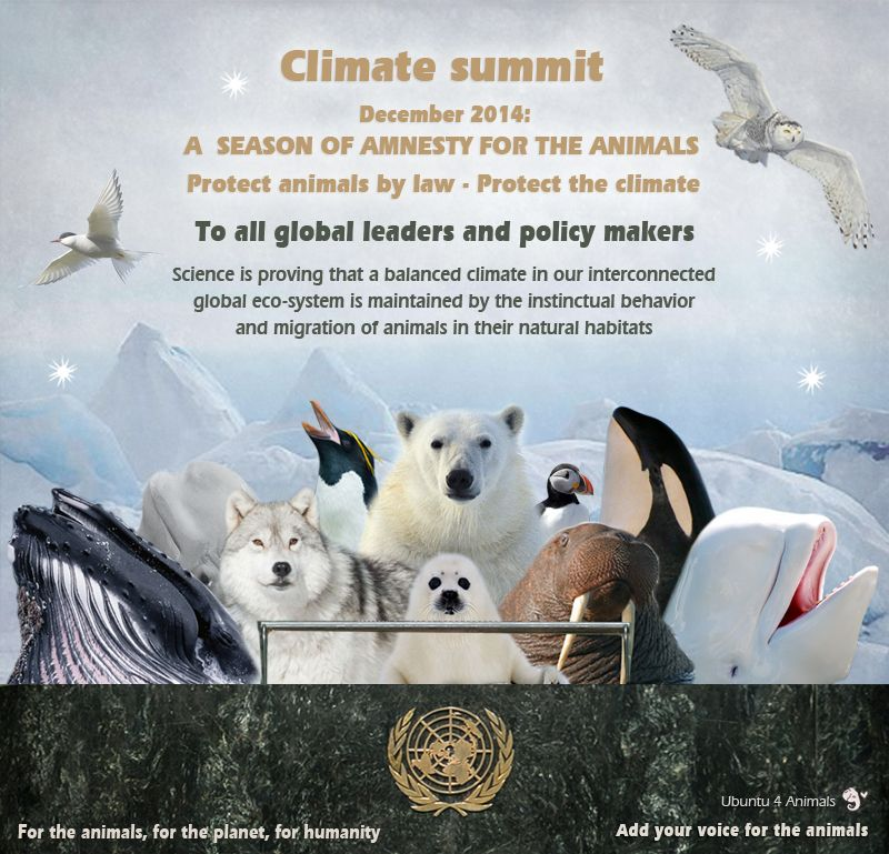 Climate Challenge 2015 Animal Rights Biodiversity With Images Ecosystems Animal Protection Challenges