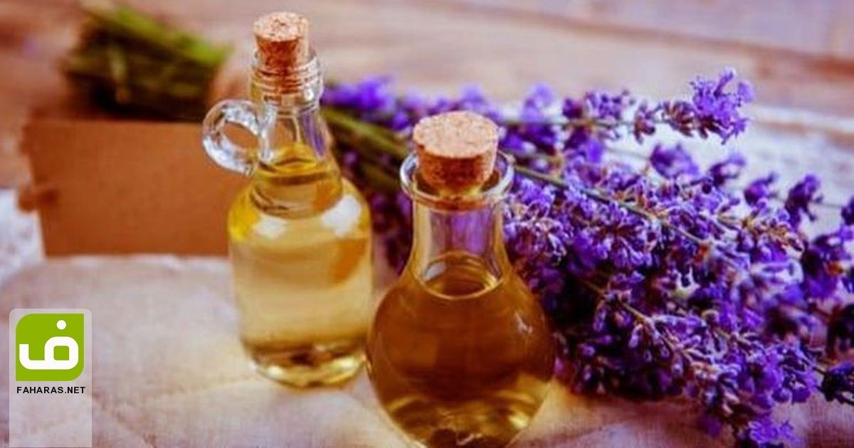 8 فوائد عند استخدام زيت اللافندر للبشرة تعرف عليها Tea Tree Oil Benefits Tea Tree Oil For Acne Tea Tree Oil Uses