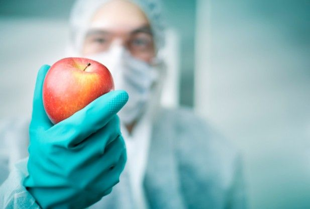 genetic engineering disadvantages food for thought health news redorbit
