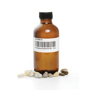 Eucalyptus Essential Oil 4 oz. $11.95  This oil is famous for its anti-inflammatory, antiseptic, decongestant and antibacterial properties. O-E204-E Order Here: africaimports.com