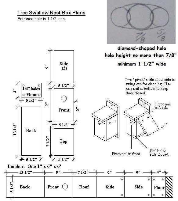 barn swallow birdhouse hole size zwaluwen huisjes