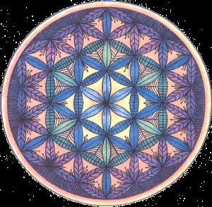 Flor De La Vida Arte Mandalas Geometría Sagrada Sacre