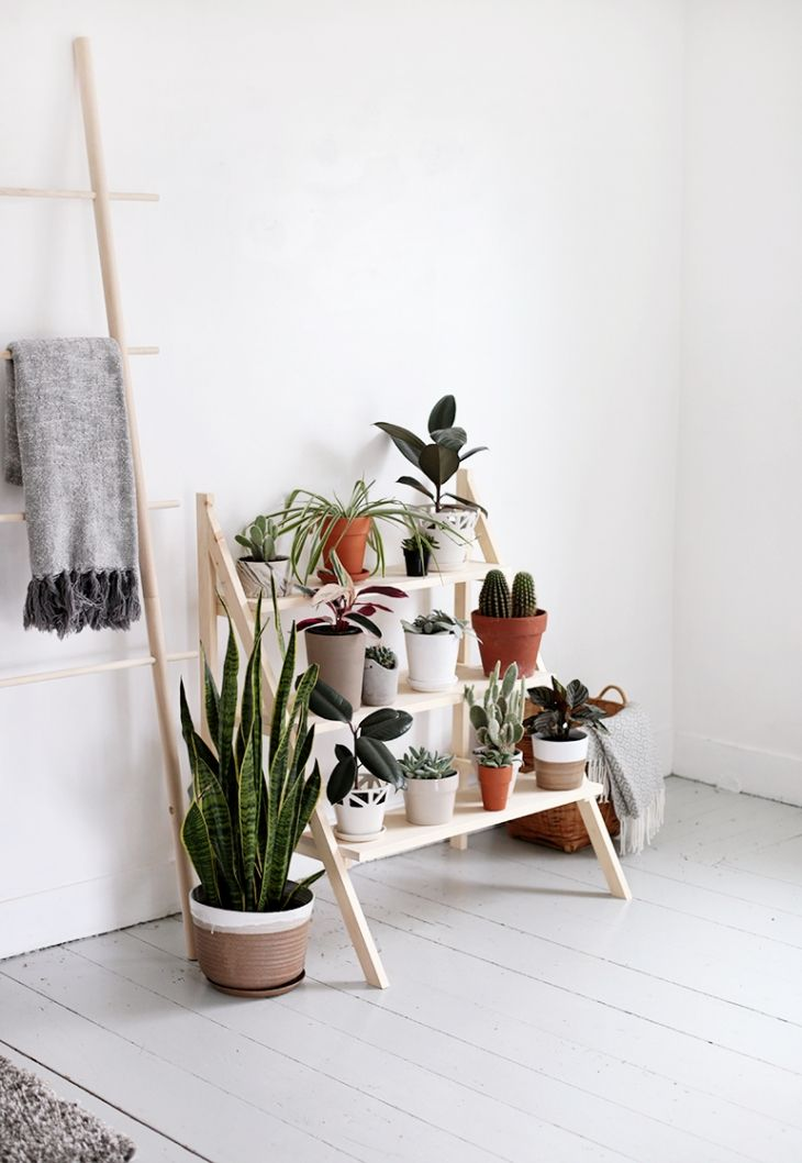 DIY Ladder Plant Stand is part of Retro home decor - One of the things that Caitlin is not lacking in her new house is plants! She may still need to put together a whole living room, a few finishing touches on her bedroom, get a washer & dryer, (she can cross that gorgeous kitchen off the list now!) but plants, plenty of those! We always seem to…