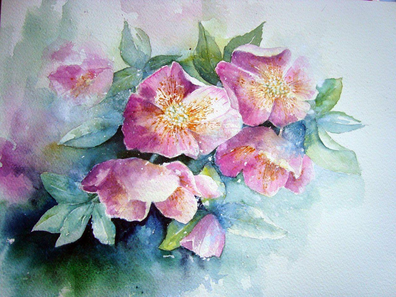 Картинки с цветами красивые нарисованные акварелью, про дураков прикольные