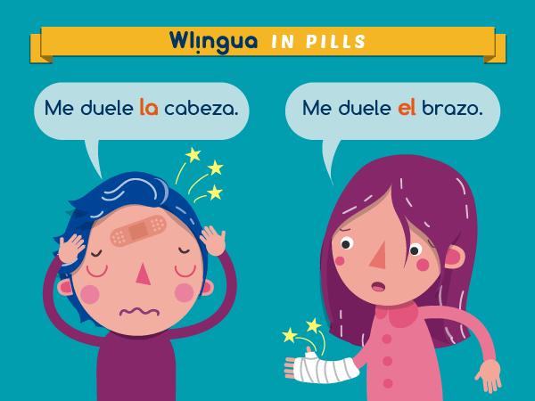 """""""Mi"""", """"tu"""", """"su""""... no se suelen usar en español con las partes del cuerpo. En su lugar usamos """"el"""" o """"la""""."""