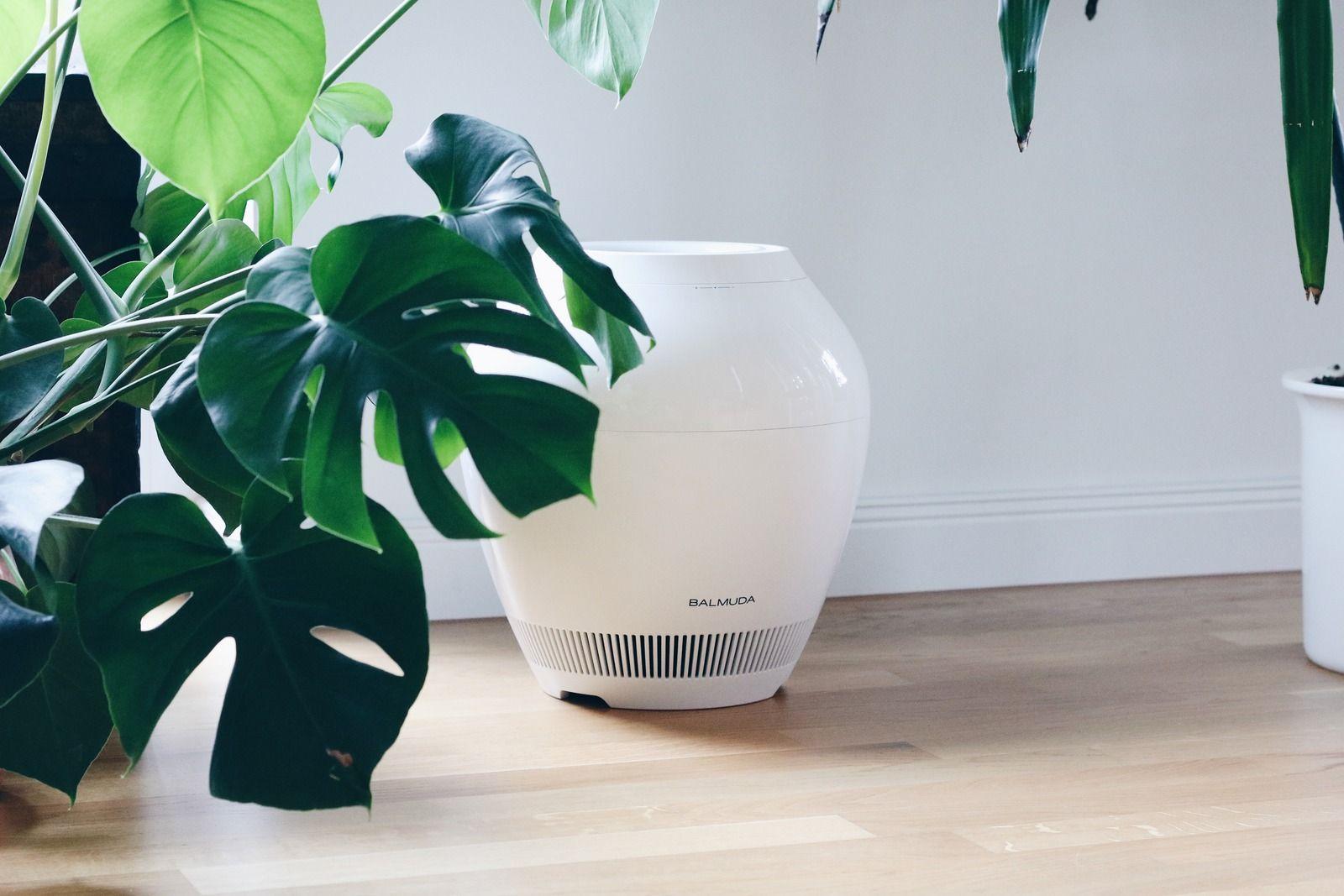 Luftentfeuchtungsgeräte Schlafzimmer ~ Egoa die elegante art der luftentfeuchtung luftentfeuchter