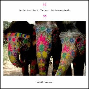 elegant elephants #elepahants#