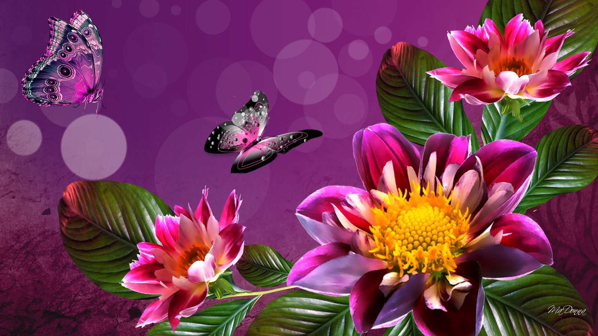 Bright Summer Flowers Wallpaper