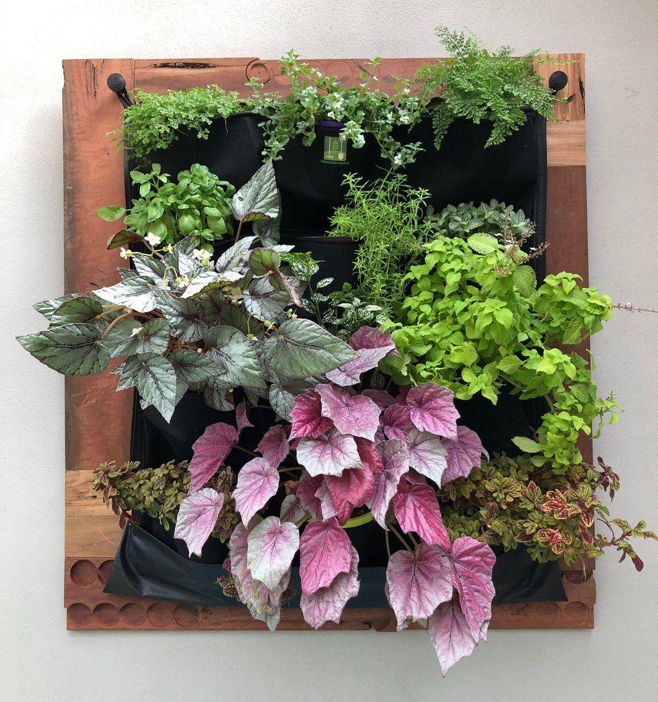 12 pocket indoor waterproof vertical living wall planter on indoor vertical garden wall diy id=66853