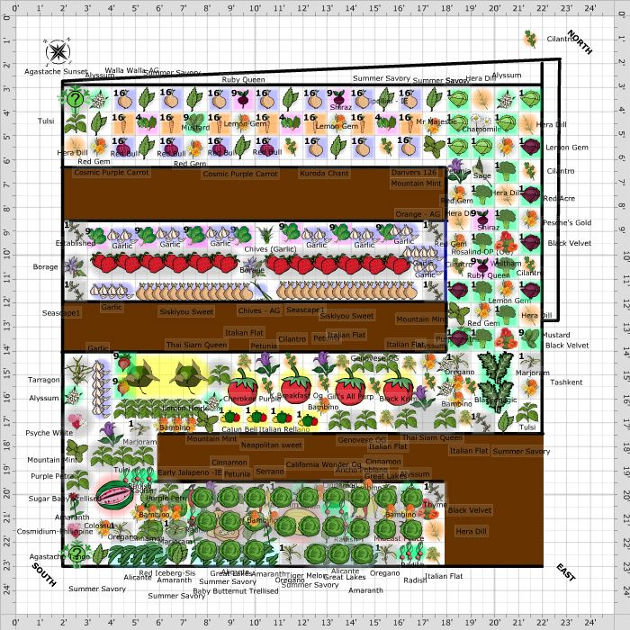 Garden Plan 2016 20 X 20 Replacing 10 X 20 Garden Planning