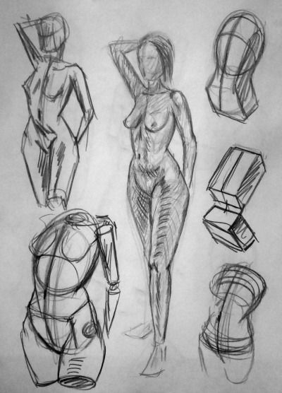 Learning To Draw Human Anatomy Art Anatomy Sketches Figure Drawing