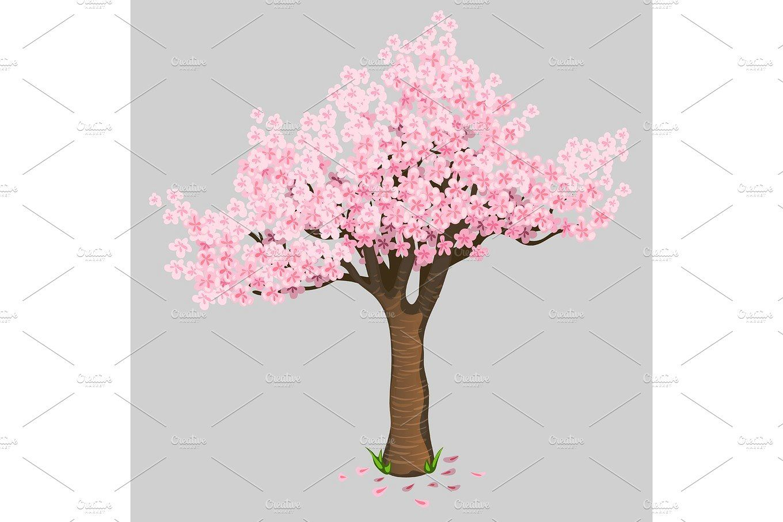 Beautiful Tree Cherry Blossoms Gentle Sakura Beautiful Tree Evergreen Tree Tattoo Tree Illustration