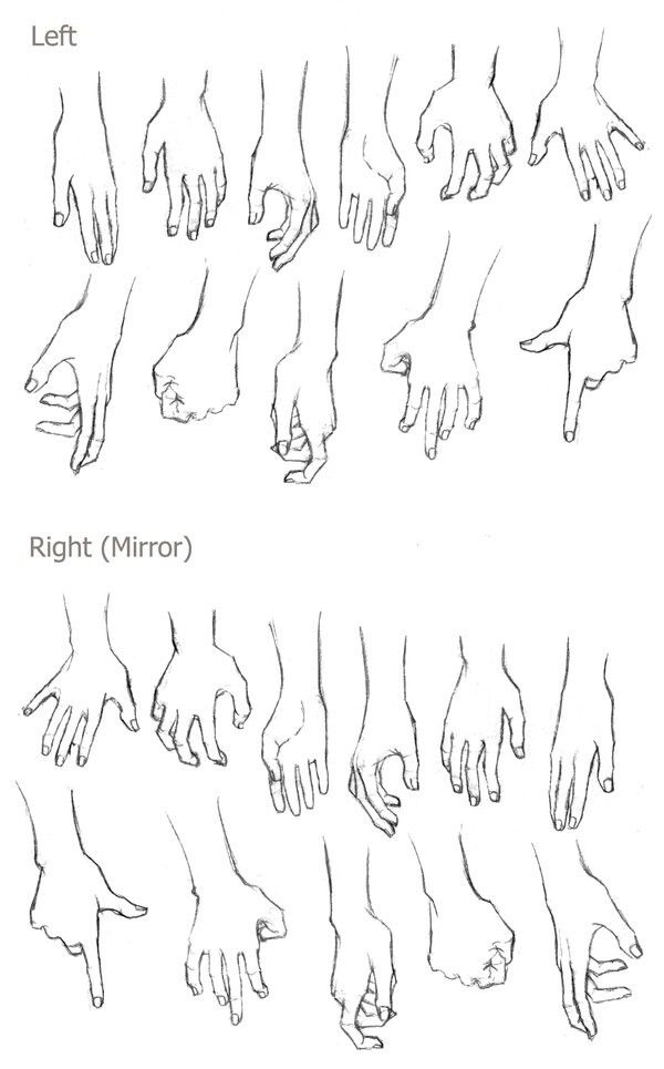 Left And Right Hands Human Form Poses Drawings Art Reference