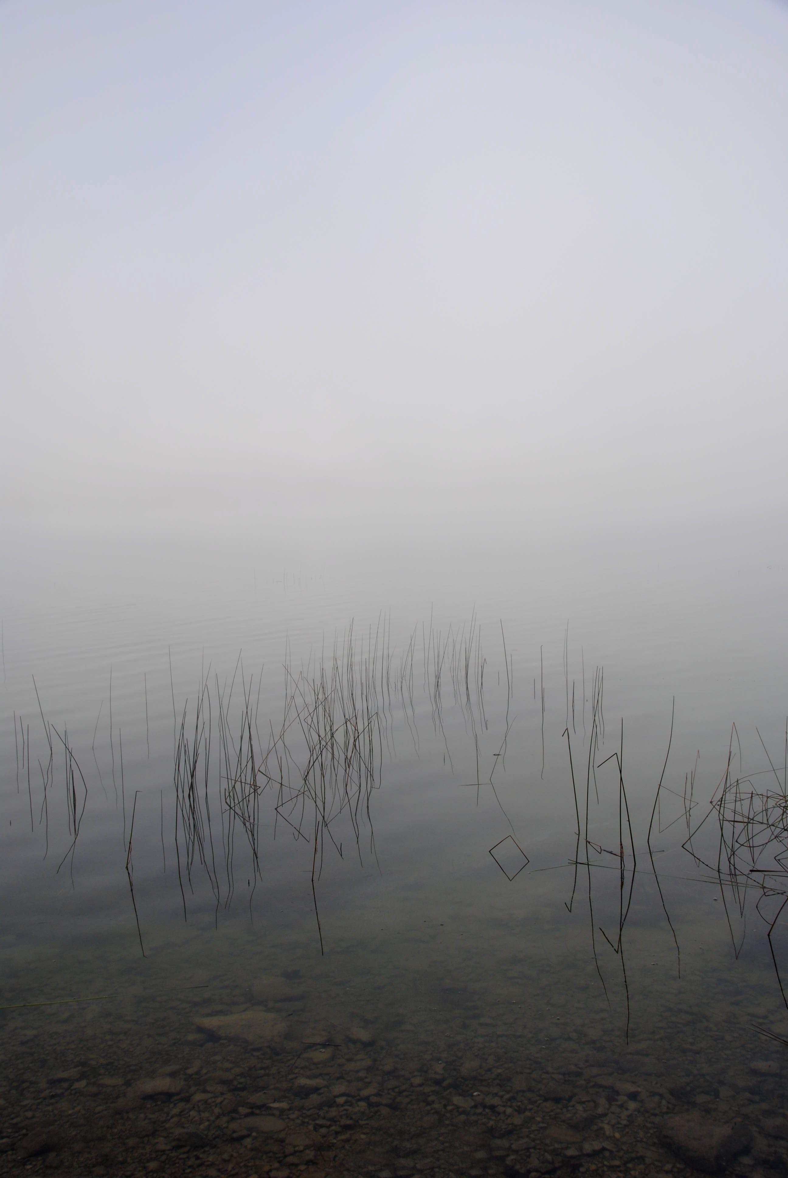 Tour du Lac de Saint Point