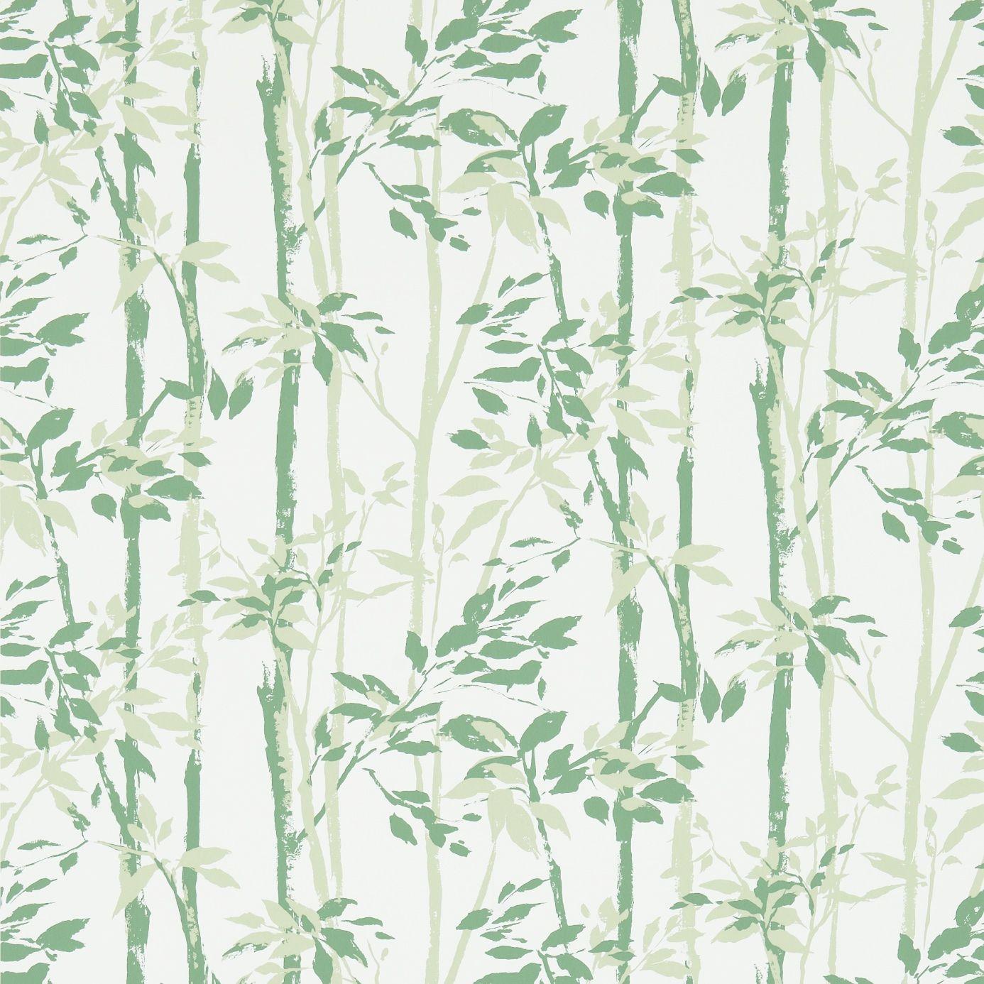 Beechgrove (DVIN214575) | Vintage 2 Wallpapers