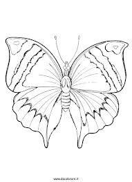 Disegni Da Colorare Sulla Simmetria Farfalle Disegni Da Colorare