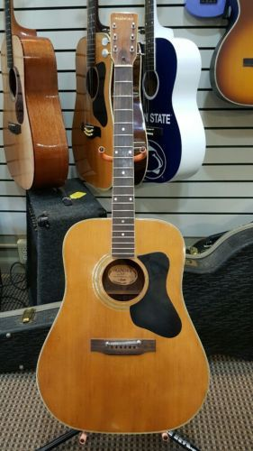 Guitar Vintage Madeira By Guild A30 Acoustic Guitar Repair Please