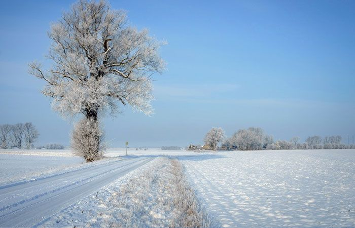 20 Beautiful Winter Wallpapers