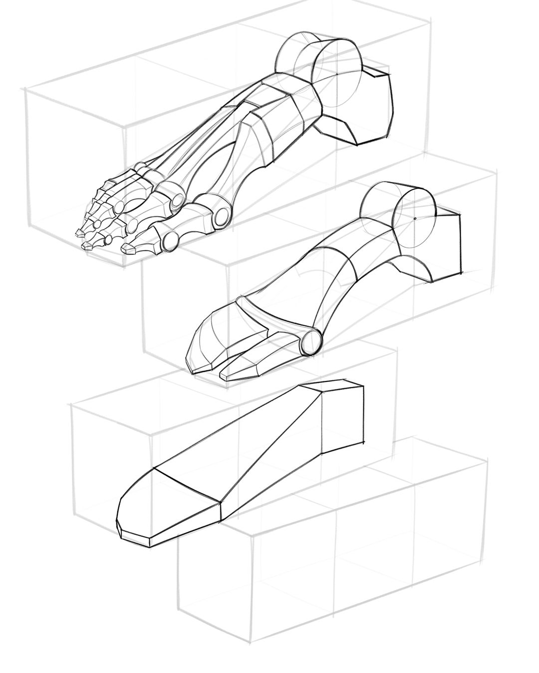 How To Draw Feet With Structure Foot Bone Anatomy