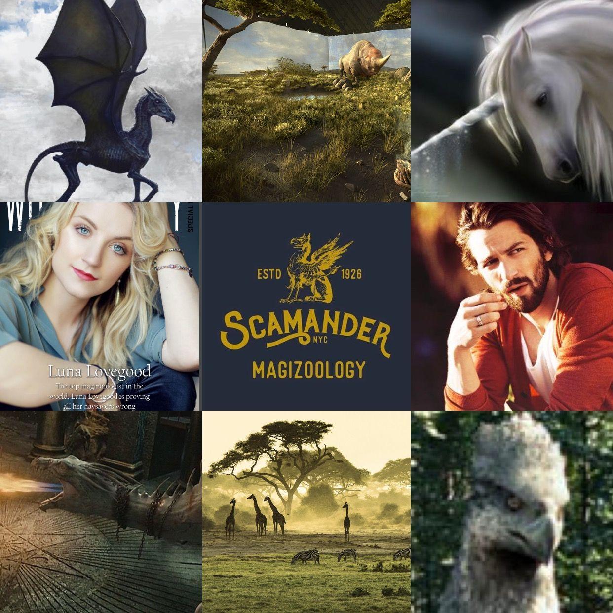 Luna And Rolf Scamander Harry Potter Luna Lovegood Rolf Scamander Luna Lovegood Rolf Scamander