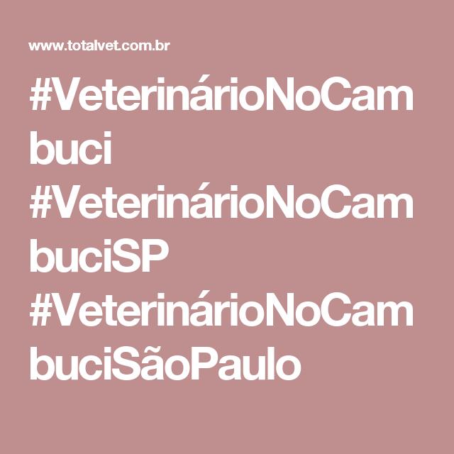 #VeterinárioNoCambuci #VeterinárioNoCambuciSP #VeterinárioNoCambuciSãoPaulo