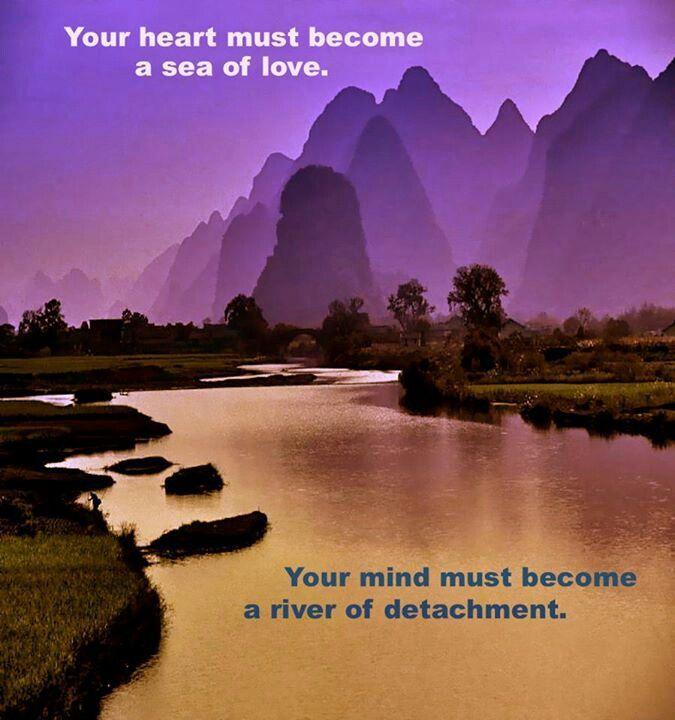 Pin By Hannah Stout On Detaching With Love Detachment Quotes Detachment Spiritual Awakening
