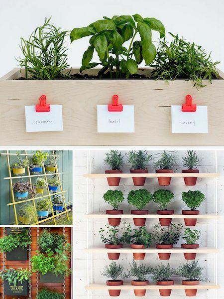 Roundup 10 More Small Space Herb Garden Ideas Small Space Herb Garden Ideas Small Herb Gardens Herb Garden Wall